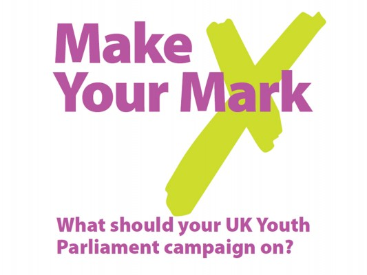 make your mark youth parliament
